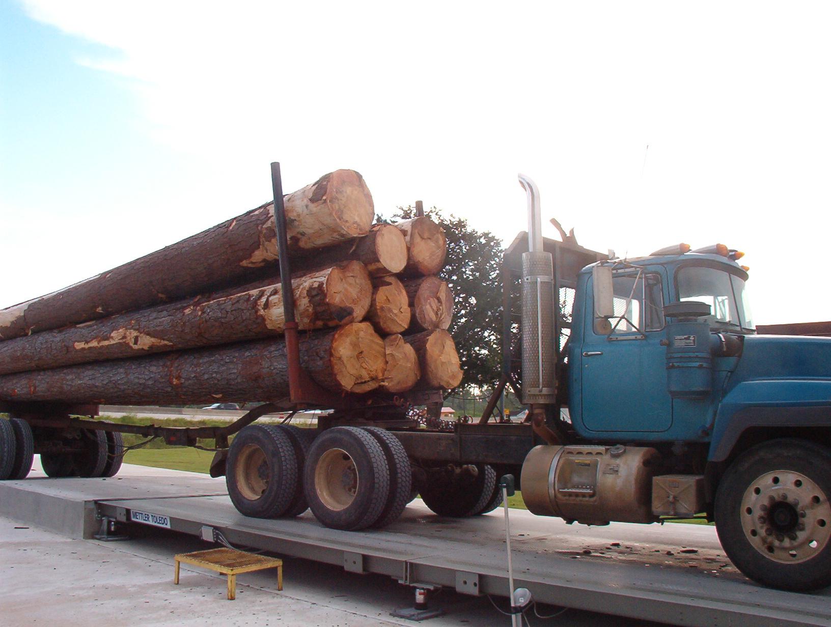 Delivered Logs